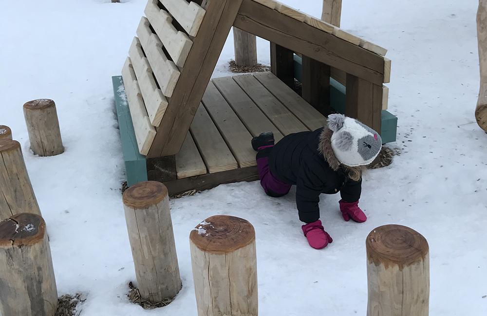 Edmonton Alberta Canada Playground Design